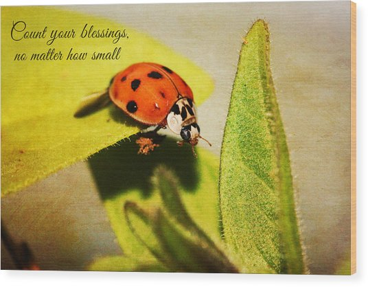 Count Your Blessings Wood Print