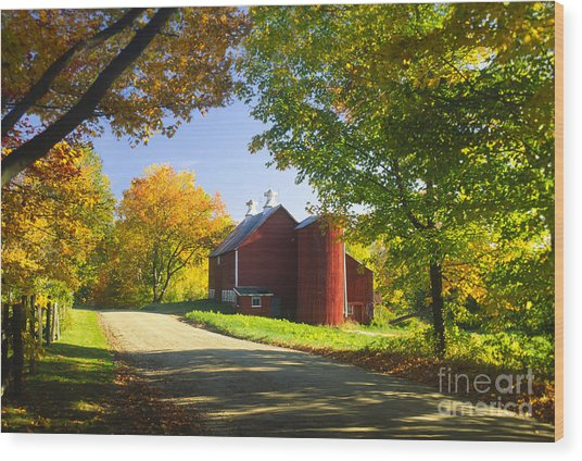 Country Barn On An Autumn Afternoon. Wood Print