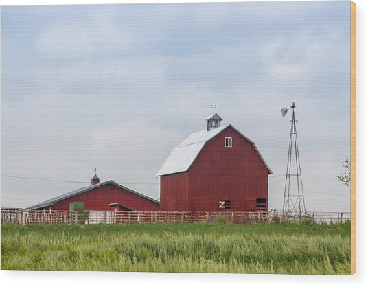 Country Farm Portrait Wood Print