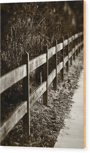 Country Fence Sepia Wood Print