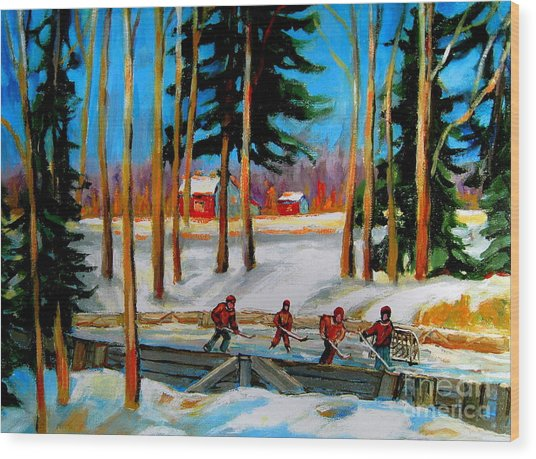 Country Hockey Rink Wood Print