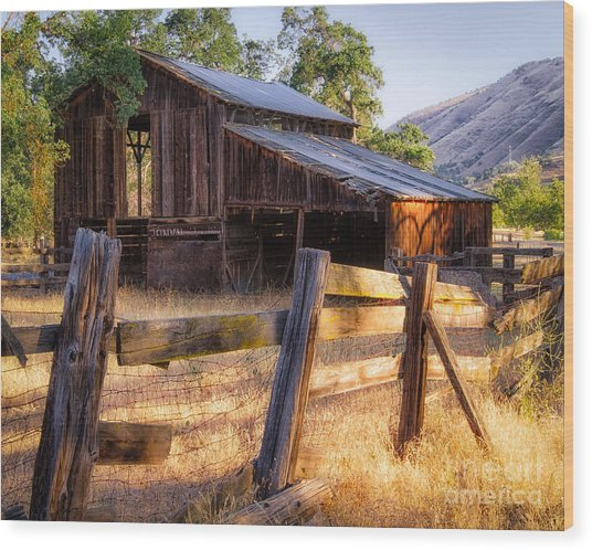 Country In The Foothills Wood Print
