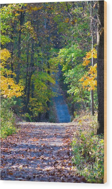 Country Lane Wood Print by Deb Kline