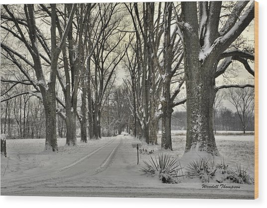 Country Lane In Winter Wood Print