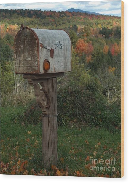Country Mail Box Wood Print