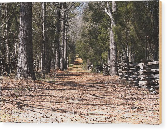 Country Road Wood Print by Arthur Warlick