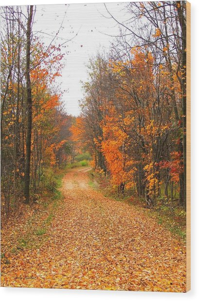 Country Road Wood Print by Judy  Waller