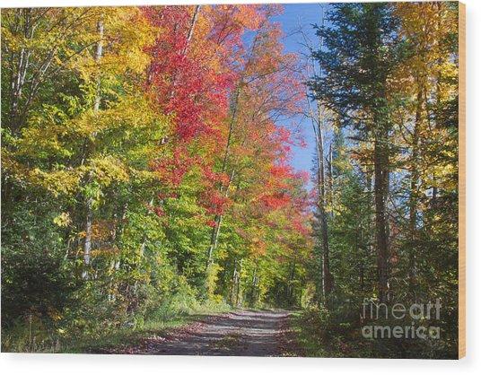 Country Road Ny Wood Print