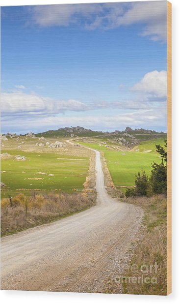 Country Road Otago New Zealand Wood Print by Colin and Linda McKie