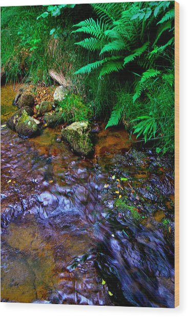 Country Stream Wood Print