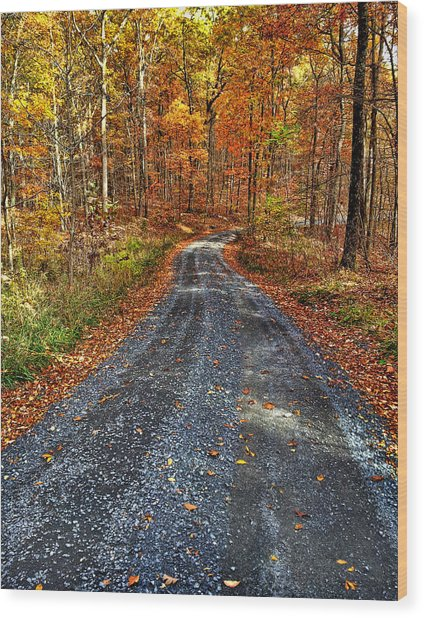 Country Super Highway Wood Print
