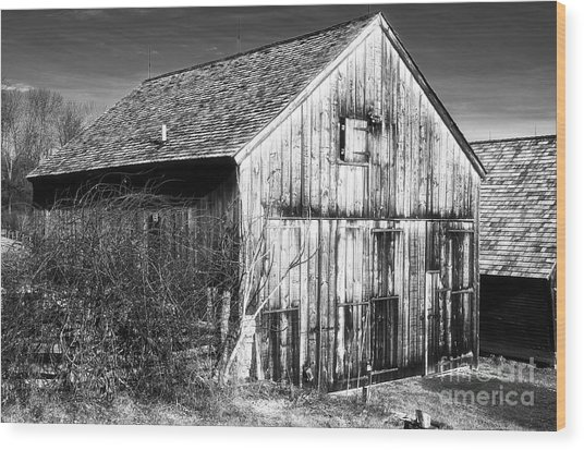 Country Time Wood Print by John Rizzuto