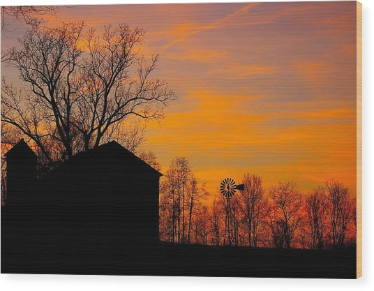 Country View Wood Print