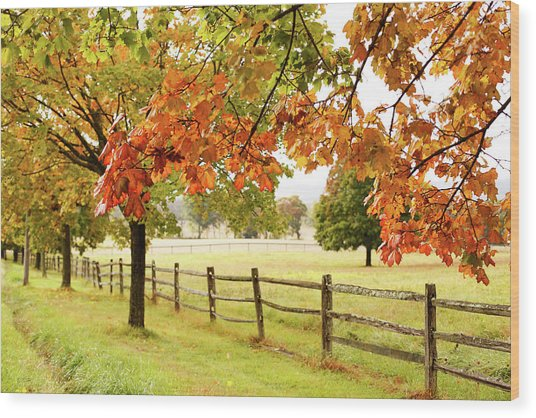 Countryside Landscape With Fence Wood Print by Jena Ardell