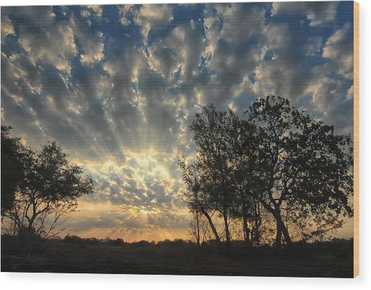 Countryside Sunrise Wood Print