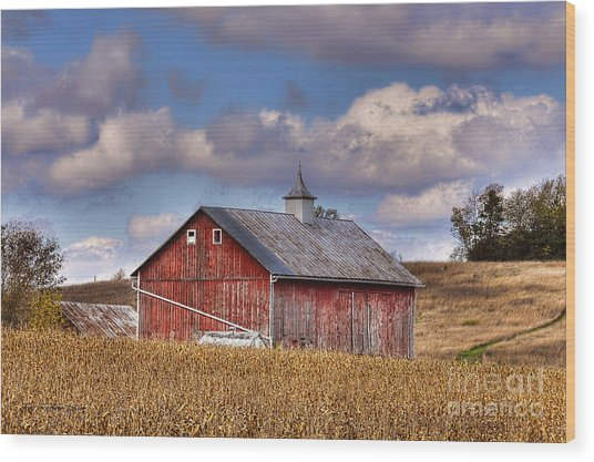 County G Barn In Autumn Wood Print