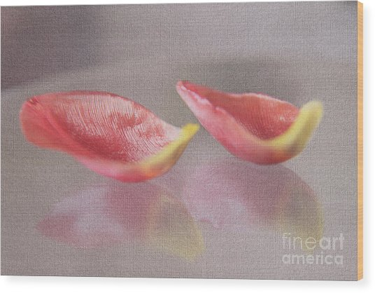 Couple Of Red Tulip Petals Wood Print