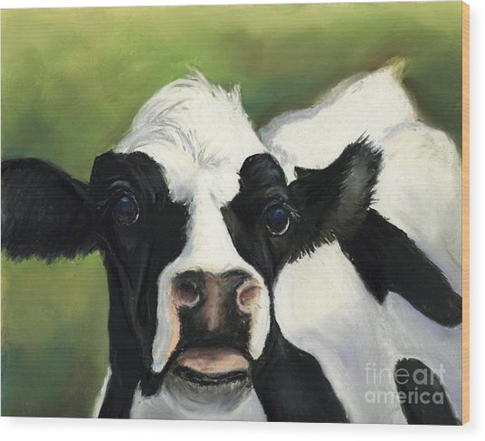Cow Closeup Wood Print by Charlotte Yealey