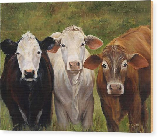 Cow Painting Of Three Amigos Wood Print