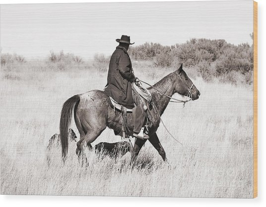 Cowboy And Dogs Wood Print