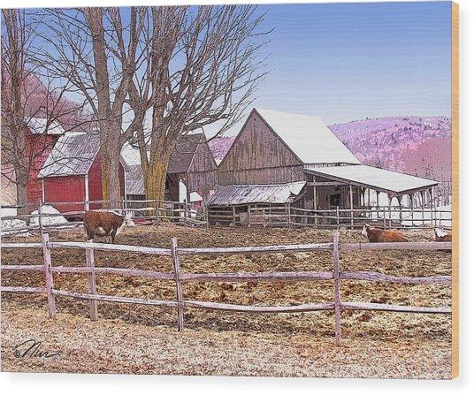 Cows At Jenne Farm Wood Print