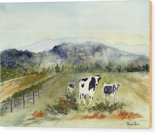 Cows In Vermont  Wood Print by Peggy Maunsell