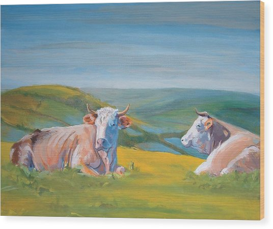Cows Lying Down Painting Wood Print
