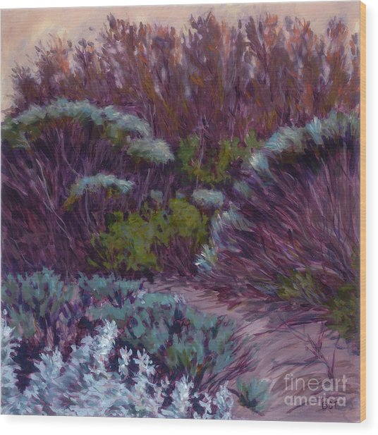 Coyote Brush And Willows Wood Print