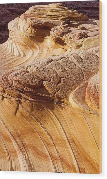 Coyote Buttes Pattern In Nature Wood Print