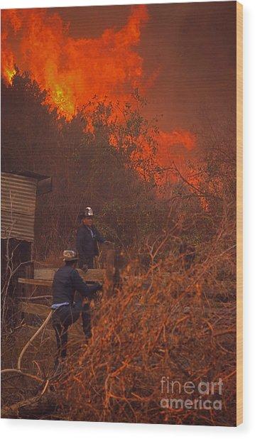 Coyote Fire - 1969 Wood Print