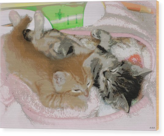 Cozy Kittens Wood Print