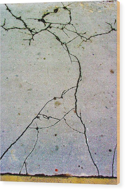 Cracks In The Edifice Wood Print