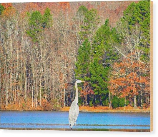 Crane And Color Wood Print