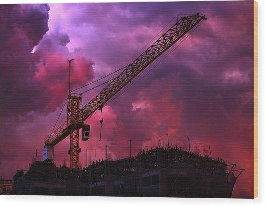 Crane I Wood Print by Felipe Djanikian