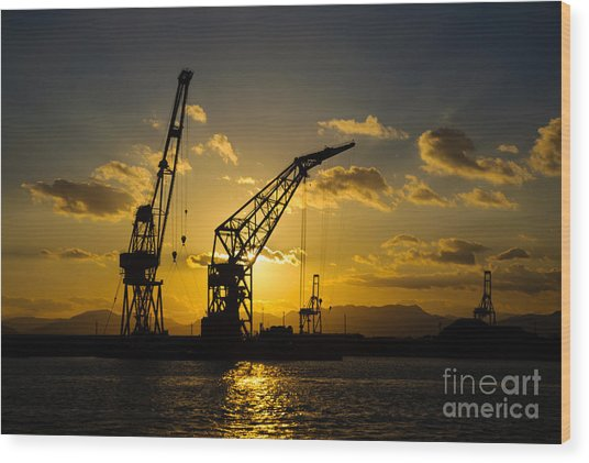 Cranes In The Sunset Wood Print