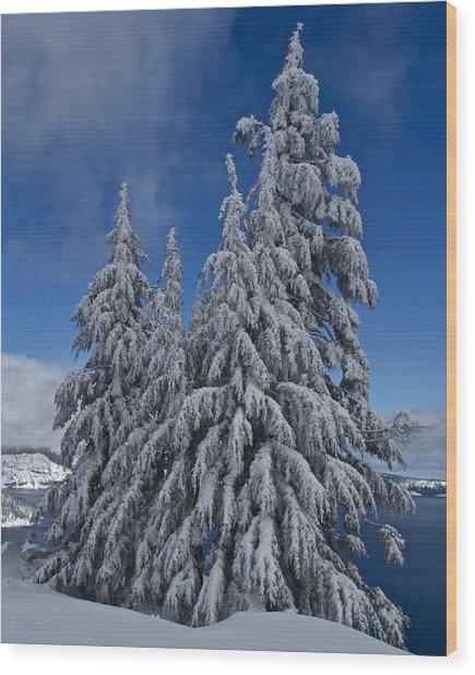 Crater Lake Trees  Wood Print