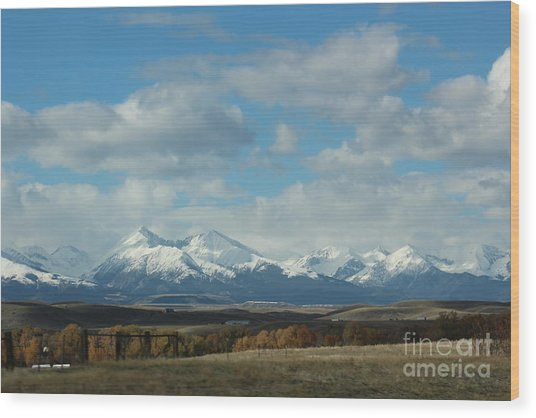 Crazy Mountains 1 Wood Print by Brenda Henley