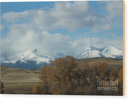 Crazy Mountains 3 Wood Print by Brenda Henley