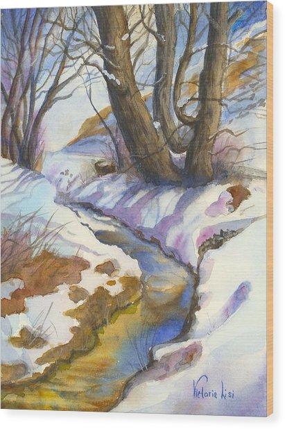 Creek At Bobcat Ridge Wood Print