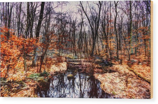 Creek At Pyramid Mountain Wood Print