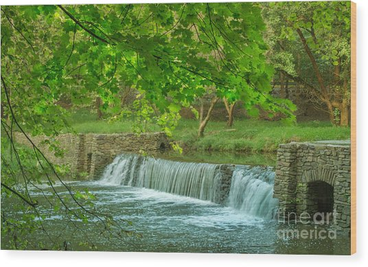 creek at Valley Forge Wood Print