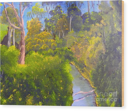 Creek In The Bush Wood Print