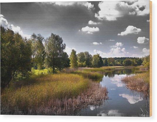 Creek In The Garden Wood Print