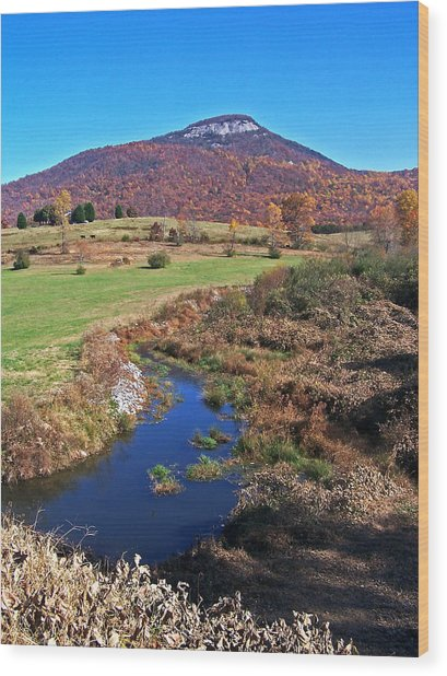 Creek In The Valley Wood Print