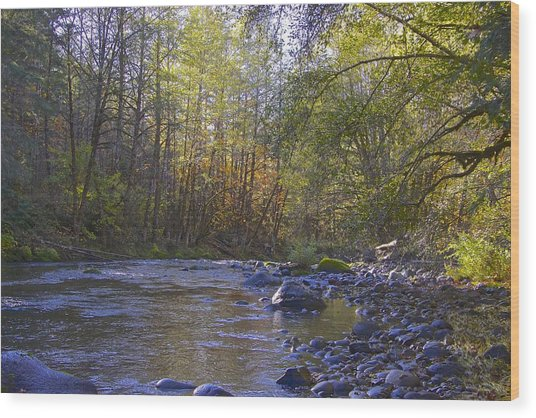 Creek Of Native Times Wood Print by Tim Rice