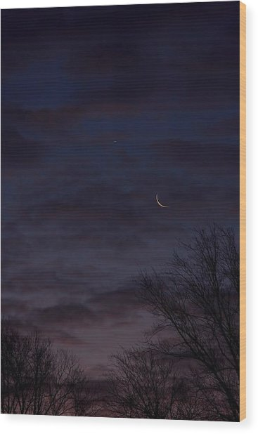 Crescent Moon And Venus Rising Wood Print