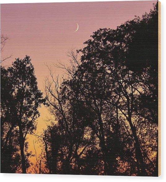 Cresent Beyond Wood Print by Bruce Bley