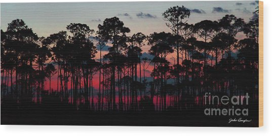 Crimson In The Pines Wood Print