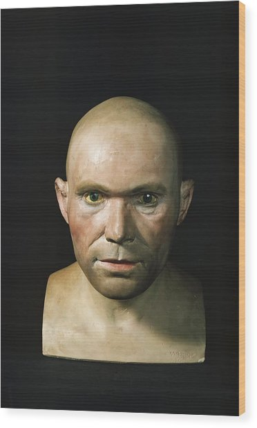 Cro-magnon Man Reconstructed Head Wood Print by Science Photo Library