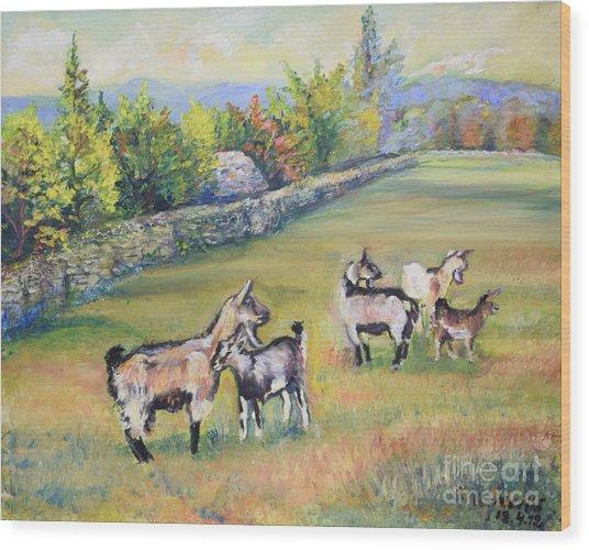 Croatian Goats Wood Print
